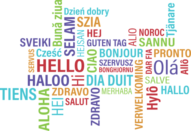 What is the Ideal Rate for an Online Translator?